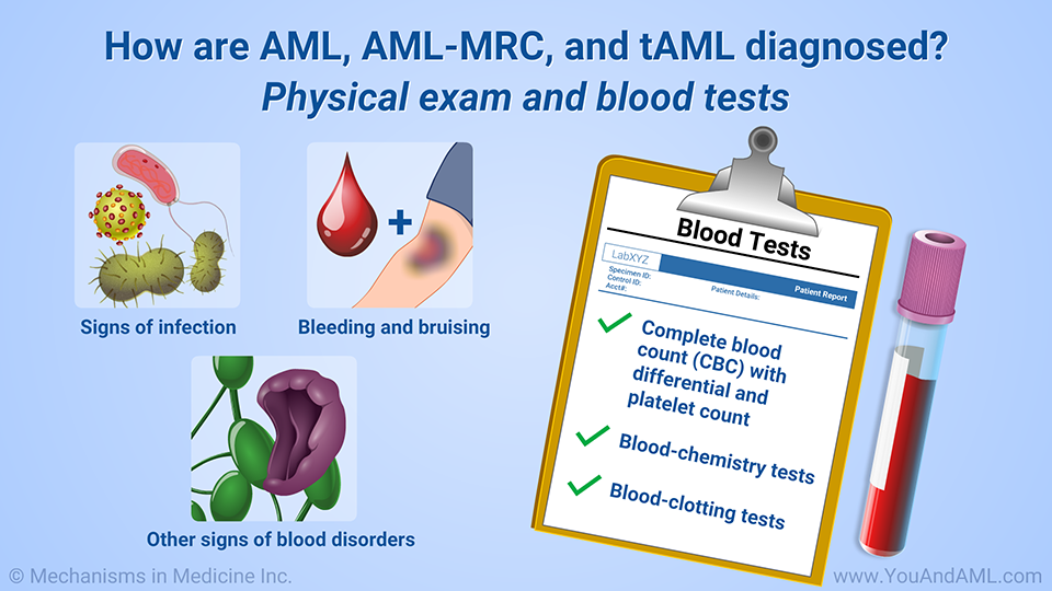 How are AML, AML-MRC, and tAML diagnosed? Physical exam and blood tests