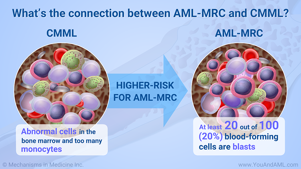 What's the connection between AML-MRC and CMML?