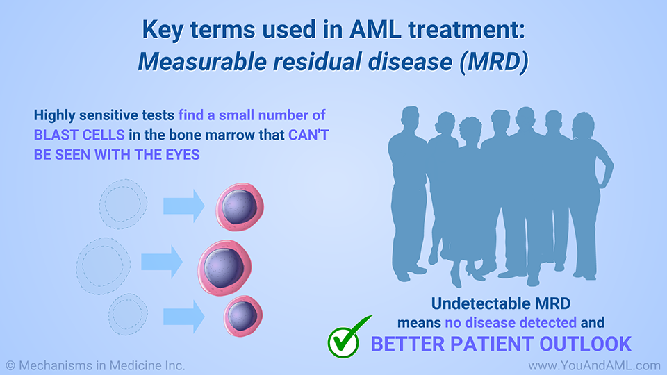 Key terms used in AML treatment: Measurable residual disease (MRD)