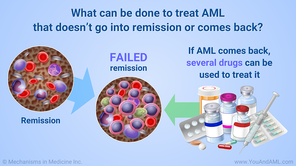What can be done to treat AML that doesn't go into remission or comes back?