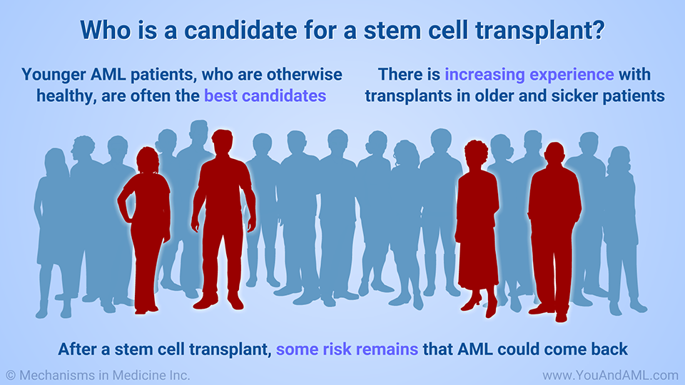 Who is a candidate for a stem cell transplant?