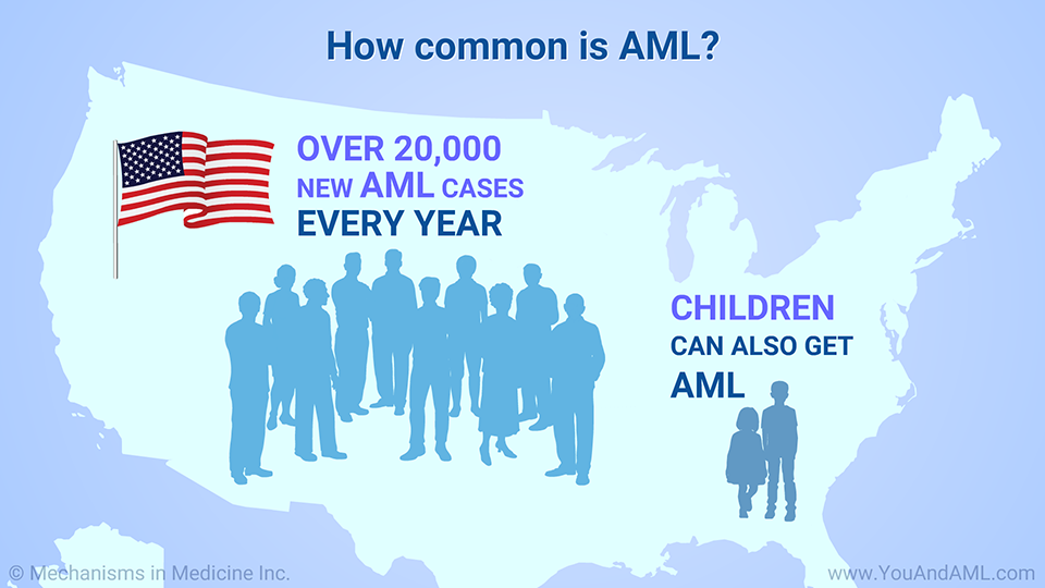 How common is AML?