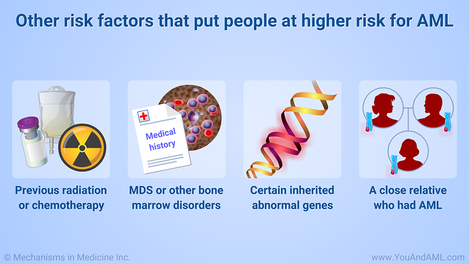 Other risk factors that put people at higher risk for AML